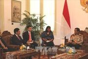 Phó Thủ tướng Phạm Bình Minh chào xã giao Tổng thống Indonesia