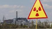 Xuất hiện nhiễm xạ nguy hiểm tại Chernobyl do cháy rừng