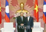 Chủ tịch Quốc hội Nguyễn Sinh Hùng tiếp Phó Chủ tịch nước Lào