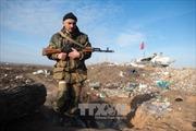 Ukraine nhận vũ khí sát thương từ hơn 10 nước phương Tây