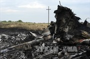 Nga không đồng tình lập tòa án quốc tế về vụ MH17 vào thời điểm này