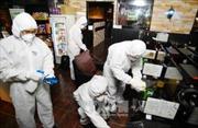 Hàn Quốc không có thêm ca nhiễm MERS nào trong nửa tháng