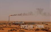 Giá vàng duy trì mức thấp, giá dầu khởi sắc đi lên