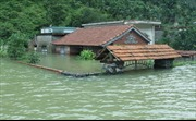 Xã Việt Hải, Hải Phòng bị cô lập 4 ngày liên tiếp vì mưa lớn