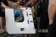 Thêm mảnh vỡ nghi của MH370 dạt vào đảo Reunion