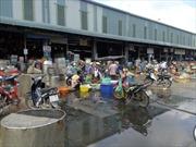 Chợ đầu mối ô nhiễm