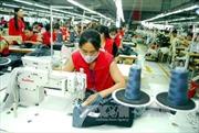Nâng biên độ chưa ảnh hưởng đến doanh nghiệp xuất khẩu