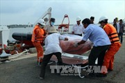Lật tàu cá trên biển Bình Thuận: Đưa thi thể 2 ngư dân vào bờ