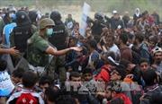 Ai Cập đang tiếp nhận khoảng 5 triệu người tị nạn