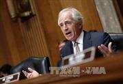 """Thỏa thuận hạt nhân Iran thắng """"hiệp đầu"""" tại Thượng viện Mỹ"""