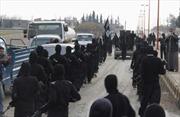 Ai Cập tiêu diệt và tử hình các đối tượng quan hệ với IS