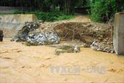 Các tỉnh ven biển chủ động đối phó với diễn biến bão lũ