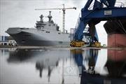 Nga chấp thuận giao thiết bị tàu Mistral cho Ai Cập hoặc Ấn Độ