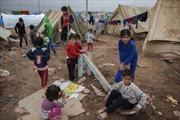 Di cư khiến một thế hệ có thể không được hưởng quyền công dân