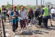 Tương lai của EU trước thử thách cuộc khủng hoảng người tị nạn