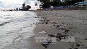 Đảo ngọc Phú Quốc đối mặt ô nhiễm môi trường