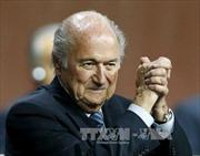 Chủ tịch FIFA và UEFA bị đình chỉ công tác
