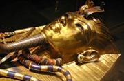 Phục chế chòm râu của Pharaoh Tutankhamun
