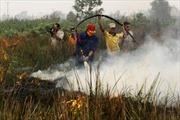 Gốc rễ của vấn đề khói bụi  ở Indonesia