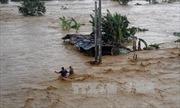 Bão Koppu khiến 22 người thiệt mạng