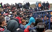 Châu Âu và bài toán nan giải về khủng hoảng di cư
