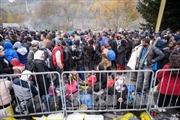 Áo dựng hàng rào dọc biên giới với Slovenia