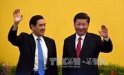 """Ông Tập Cận Bình: Trung Quốc và Đài Loan là """"một gia đình"""""""