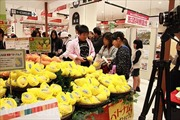 Xoài Việt Nam chính thức vào thị trường Nhật Bản