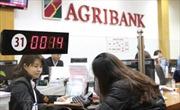 """Triển khai Đề án tái cơ cấu: Agribank đang """"vượt lên chính mình"""""""