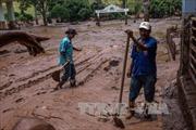 Brazil phạt nặng công ty gây tai nạn vỡ đập