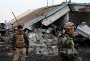 Lực lượng người Kurd giải phóng Sinjar từ tay IS