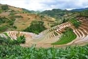 Du lịch di sản văn hóa và thắng cảnh thiên nhiên