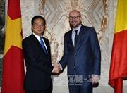 Thủ tướng Nguyễn Tấn Dũng hội đàm với Thủ tướng Bỉ