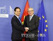 Thủ tướng làm việc với Liên minh châu Âu