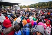 Nghi phạm khủng bố Paris từng tuyển người di cư ở Hungary