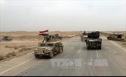 Iraq giằng co để giành lại Ramadi từ tay IS