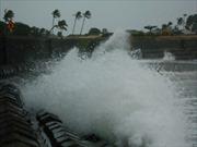 Ngư dân bị sóng đánh mất tích dạt vào bờ biển Quảng Ngãi