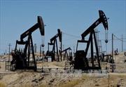 Năm 2015: Giá dầu mỏ giảm hơn 30%, giá vàng giảm 10%