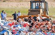 Nga tiêu hủy hàng nhập lậu từ Ukraine và Thổ Nhĩ Kỳ