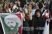 Giáo sĩ dòng Shi'ite bị Saudi Arabia xử tử là ai?