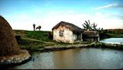 Ao cũ quê xưa