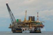 Giá dầu tiếp tục giảm, giá vàng phục hồi