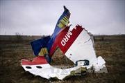 Nga công bố 6 luận điểm phản bác Hà Lan về vụ MH17