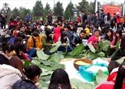 Gói bánh chưng xanh cùng người nghèo ăn Tết