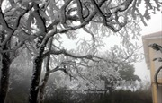 Cao Bằng: Băng tuyết phủ trắng rừng Phja Oắc