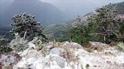 Lần đầu tiên tuyết rơi tại Bình Liêu, Quảng Ninh
