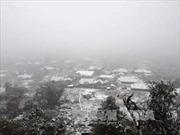 Đêm 24/1, vùng núi tiếp tục mưa tuyết và băng giá