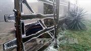 Vùng cao Lạng Sơn oằn mình trong băng tuyết
