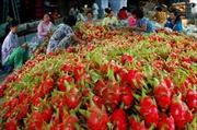 Những nông dân đưa nông sản Việt vươn xa