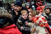 Các nước Đông Nam Âu thiết lập điểm tiếp nhận người di cư